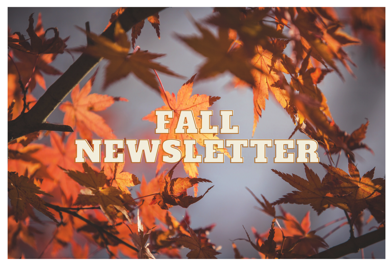 Fall 2020 Newsletter